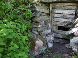 Jordkällaren sommaren 2007
